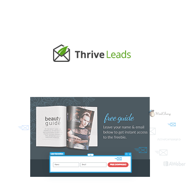 thrive leads consulting